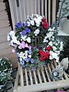 Flower_shop2